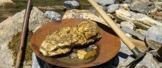 Добыча золота в тайге