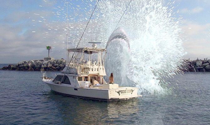Супер-акула