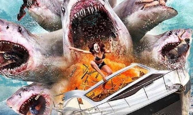 Нападение шестиглавой акулы