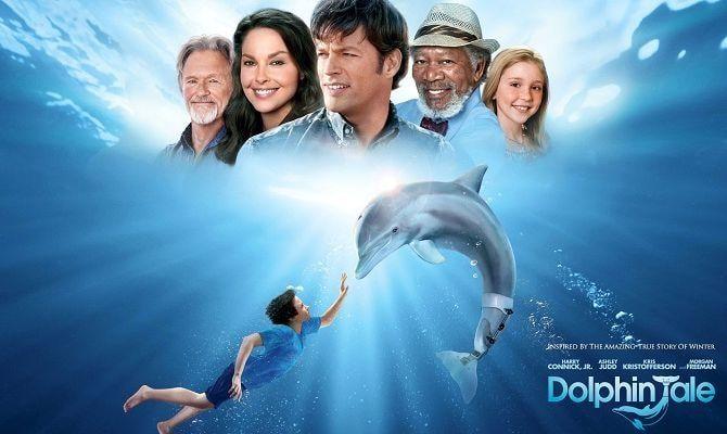 История дельфина, фильм