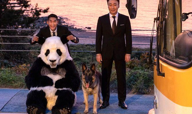 Спасти панду, фильм