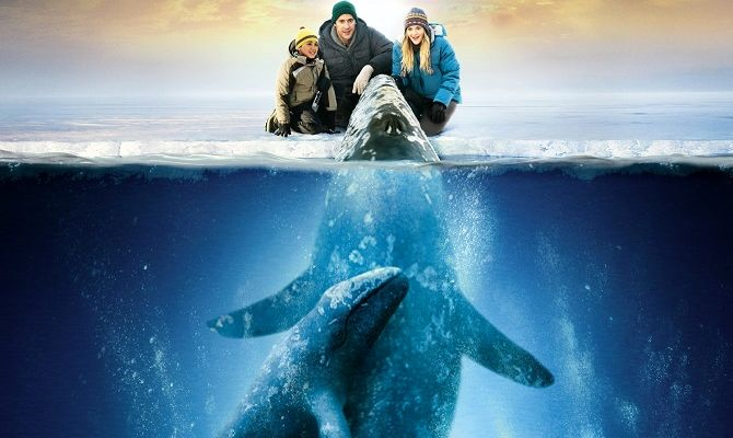 Все любят китов, фильм