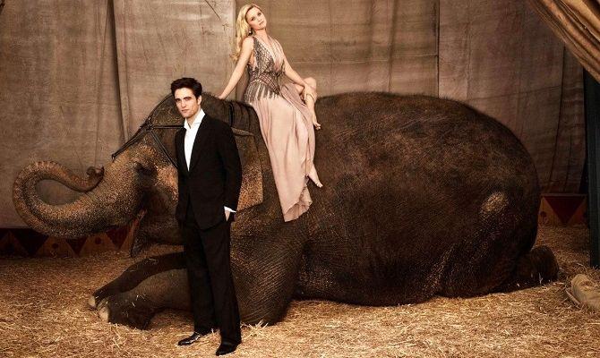 Воды слонам, фильм