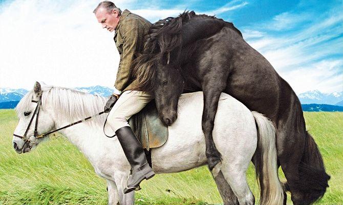О лошадях и людях, фильм