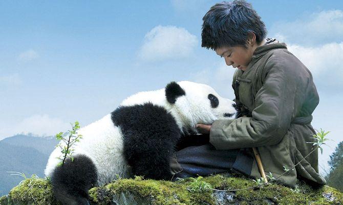След панды, фильм