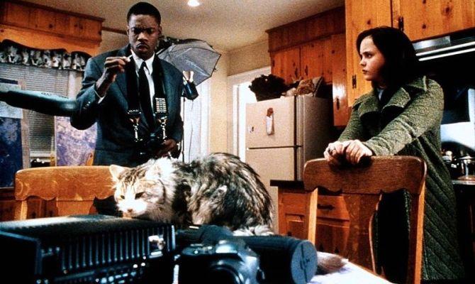 Эта дикая кошка, фильм