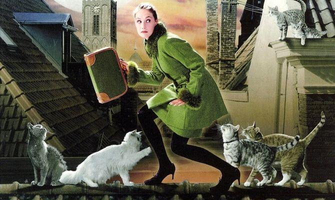 Леди-кошка, фильм