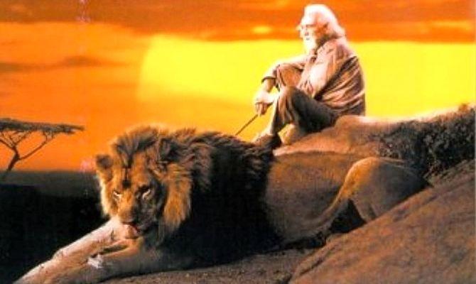 Прогулка со львами, фильм