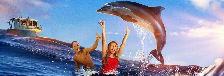 Лучшие фильмы про дельфинов