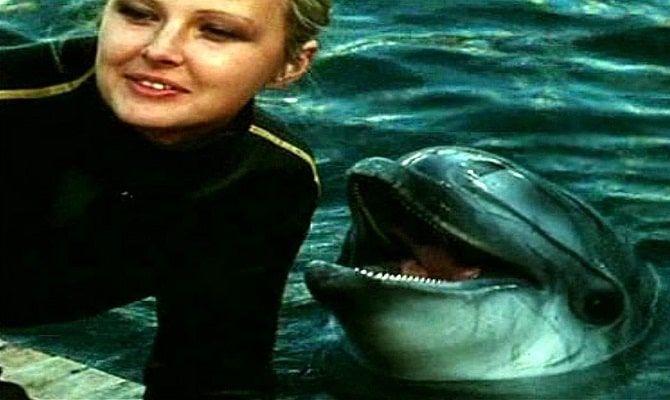 Люди и дельфины, сериал