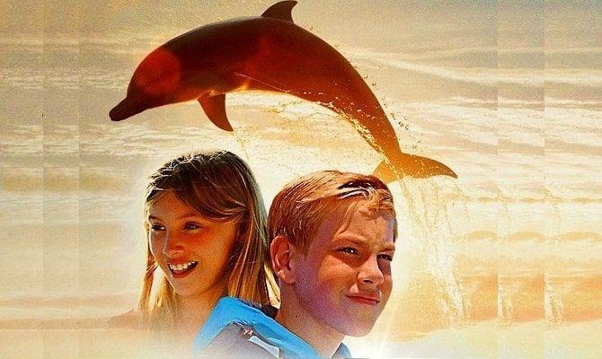 Мой друг дельфин Эхо, фильм