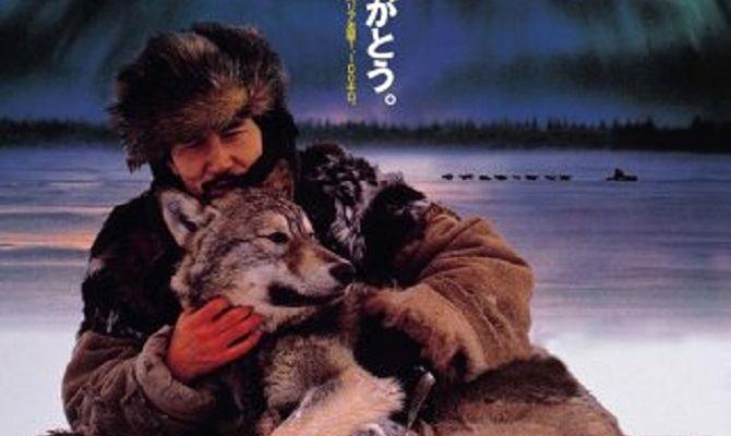 Под северным сиянием, фильм