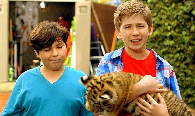 Тигриный хвост, фильм