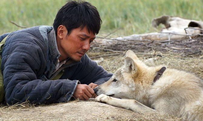 Тотем волка, фильм