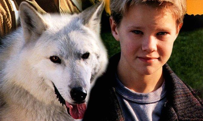 Время волка, фильм